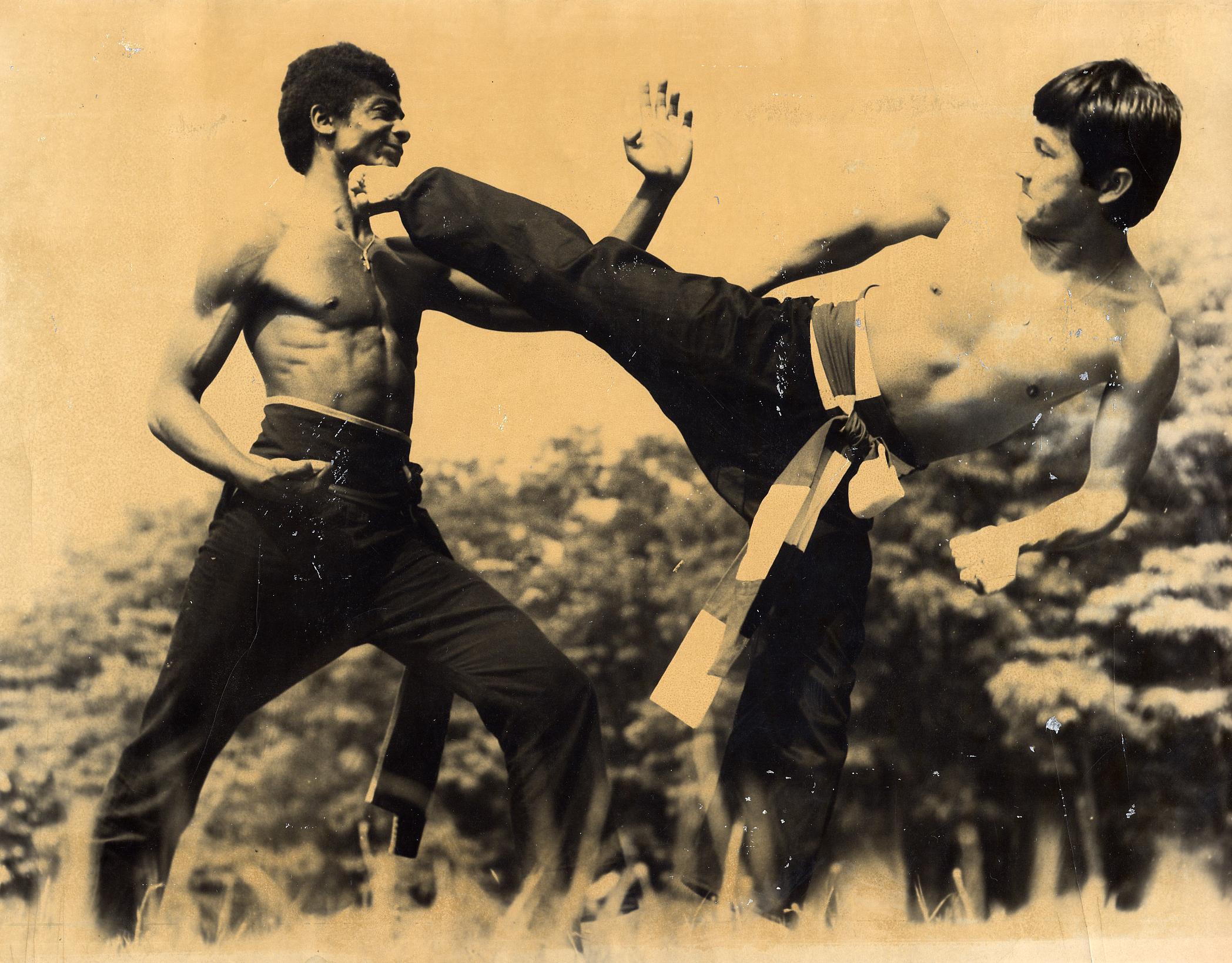 Le vietvodao viet vo dao chaville for Origine des arts martiaux